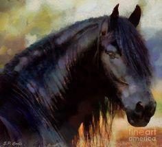 Friesian Painting  - Elizabeth Coats