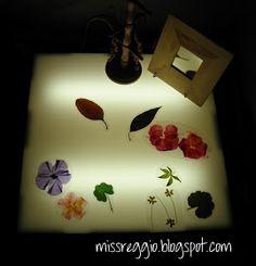 Creativity is Contagious... Pass it On!: 15 Light Table Ideas in the Reggio Classroom