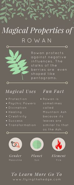 green witchcraft Note: Rowan is THE tree of hedgewitches, helping to open the gateway for spirit communication. Green Witchcraft, Wiccan Spells, Witchcraft Herbs, Wiccan Magic, Religion Wicca, Herbal Magic, Magic Herbs, Plant Magic, Practical Magic
