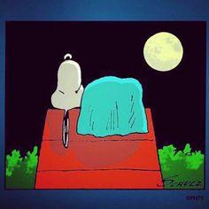 Good night <3
