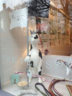 After a good muddy run in the park, we headed off to the new premises of The Pet Spa – on Fulham Road.