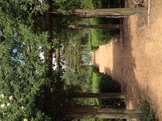 Babylonstoren Outdoor Retreat, Outdoor Rooms, Outdoor Gardens, Outdoor Living, Lush Garden, Dream Garden, Vegetable Planting Guide, Garden Inspiration, Garden Ideas