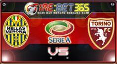 Prediksi Bola Timebet365  Verona vs Torino 18/02/2014