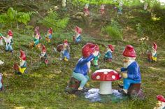 """THE GNOME RESERVE - DEVON, ENGLAND The four-acre Gnome Reserve garden is filled with over 2,000 gnomes and model pixies. Visitors get in the spirit with loaner red hats and fishing poles so that, as the garden's staff says, """"you don't embarrass the gnomes."""""""