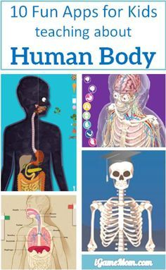 10 apps for kids to learn about human body -- apps are perfect learning tools to learn human anatomy and functions. With interactive multi-media features it is fun to see the inside of your body and play with the interactive visuals and videos. Kids w Science Lessons, Teaching Science, Science For Kids, Science Activities, Science Projects, Teaching Kids, Apps For Kids, Educational Activities, Learning Apps