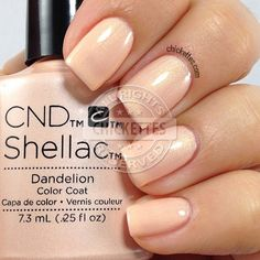 CND Shellac Dandelion - swatch by Chickettes.com
