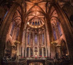 Catedral de la Santa Creu by olemsteffensen
