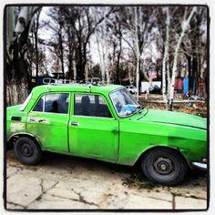 Green Tajik classic