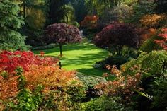Sunken Garden at the Butchart Gardens in Canada ~ fall colors
