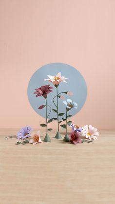 3,146 отметок «Нравится», 106 комментариев — Sarah Louise Matthews (@_sarah_matthews) в Instagram: «#marchmeetthemaker 〰️ Process 〰️ 🌸🌺🌼» All Things, Cards, Instagram, All Flowers, Types Of Flowers, Paper Flowers, Maps, Playing Cards