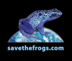 SAVE THE FROGS Blue Poison Dart Frog Organic Cotton T-Shirt