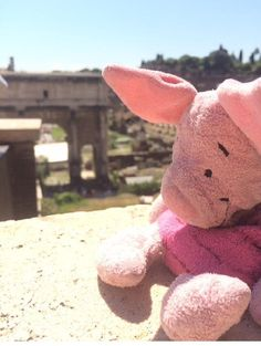 Lost on 30/05/2015 @ Rome FCO airport departure lounge. Well loved and missed piglet who was in a small black handbag and left near gate 2 just before flight to Gatwick London at 19.50 hours Visit: https://whiteboomerang.com/lostteddy/msg/dnd7gm (Posted by CERIS DONOVAN on 13/06/2015)