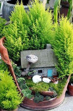 Vasos quebrados são transformados em pequenos jardins