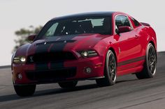 10+  2013 Ford Shelby GT500 pictures