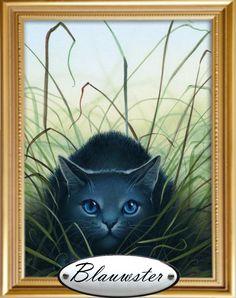 Dit is een van mijn favoriete Warrior Cat Blauwster de leider van de DonderClan