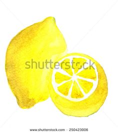 Lemon. Hand drawn watercolor painting on white background.