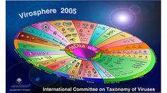 Virosphere 2005