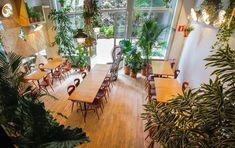 **à tester** KING KONG - resto-concept - un fast food de cuisine péruvienne / déco jungle, grande arrière terrasse / prix moyen 10€ - 227 Chaussée de Charleroi 1060 Bruxelles - 02/537.01.96
