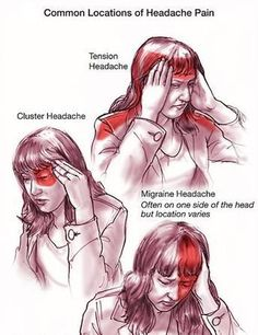 All Useful Information About Headaches:   http://positivemed.com/2012/07/27/all-about-headaches/