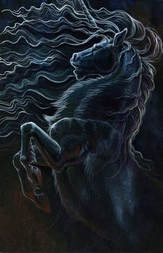 Eclipse by `hibbary on deviantART. Beautiful. It makes me think of a ghost horse.