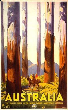 Austrailia - Tallest Trees ~ Fine-Art Print - Vintage Australian Travel Art Prints and Posters - Vintage Travel Pictures Old Poster, Poster Art, Retro Poster, Kunst Poster, Poster Prints, Art Posters, Graphisches Design, The Design Files, Graphic Design