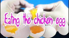 Eating the chicken egg meal lunatik dinner #006 - asmr eating sounds no talk