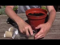 ▶ Gardening Hacks - 10 Simple Tips for a Successful Vegetable Garden - YouTube