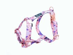 GESCHIRR GUARD 'CANDY JUNGLE' Rose Gold, Candy, Personalized Items, Rose Gold Color, Hypnotized, Dog Accessories, Nice Asses, Sweets, Candy Bars