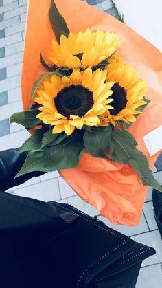 #sonnenblumen #flowers #yellow