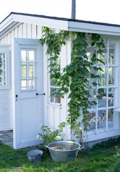 Every thought about how to house those extra items and de-clutter the garden? Building a shed is a popular solution for creating storage space outside the house Garden Cottage, Rose Cottage, Home And Garden, Backyard Greenhouse, Backyard Landscaping, Shed Design, Garden Design, Art Shed, Outdoor Living Rooms