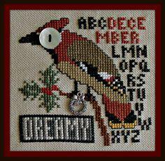 Birds Eye - Dreamy December
