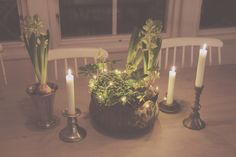 Lights in center piece - BY JO WITH LOVE