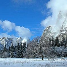 Explore Yosemite–without the crowds