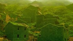 The abandoned village of Houtouwan on Shengshan Island, China (© VCG/Getty Images) – 2017-02-24 [http://www.bing.com/search?q=Houtouwan+China&form=hpcapt&filters=HpDate:%2220170224_0800%22]