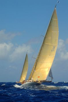 """W-76's """"Wild Horses"""" and """"White Wings"""" have caused a stir on the race circuit form the Caribbean to the Mediterranean to the USA, with their long low profiles, sweeping overhangs and modern performances.  These sleek echoes of a bygone era provide extreme sailing and competitive match racing."""