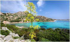 Cala Lunga - Sardinia