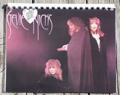 Vintage 1980s Stevie Nicks The Wild Heart Record Album Recycled / Upcycled LP Cover Blank Comb-Bound Journal