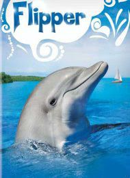 Flipper ~ the first tv show I saw in color ~ at my friend, Nancy's house.
