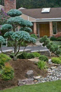10 Easy DIY Landscape plans you should try for your backyard Sidewalk Landscaping, Outdoor Landscaping, Landscaping Ideas, Home Garden Design, Garden Landscape Design, Landscape Designs, Garden Renovation Ideas, Buddha Garden, Creative Landscape