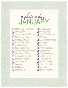 A Photo a Day Checklist ~ January | Akemi Photography