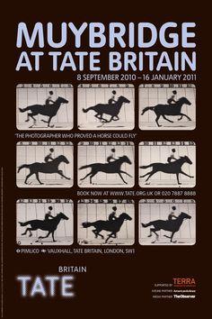 Return to the Tate home page Eadweard Muybridge, Tate Britain, Exhibition Poster, Identity, 8 September, Artsy, Horses, Books, Branding