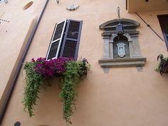 Idées créatives de bac à fleurs pour les fenêtre