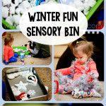 Winter Sensory/Imagination Bin