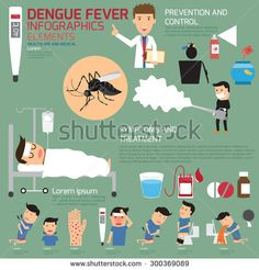 Template design of details dengue fever and symptoms with prevention infographics vector illustration.