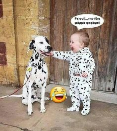 Things that make you go AWW! Like puppies, bunnies, babies, and so on. A place for really cute pictures and videos! Dogs And Kids, Animals For Kids, Animals And Pets, Nature Animals, Cute Funny Animals, Cute Baby Animals, Cute Kids, Cute Babies, Cute Puppies