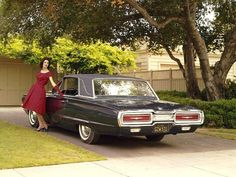 1964 Ford Thunderbird Maintenance/restoration of old/vintage vehicles: the material for new cogs/casters/gears/pads could be cast polyamide which I (Cast polyamide) can produce. My contact: tatjana.alic@windowslive.com