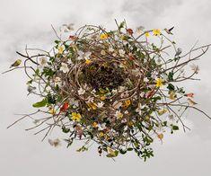 "Saatchi Online Artist: Ysabel LeMay; Photomanipulation, 2011, Digital ""NURTURING LIFE"""