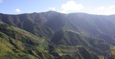 Montanhas Blue e John Crow (Jamaica)