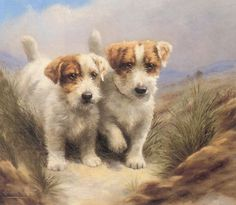 """""""Good Friends Sealyham Terriers"""" by Lilian Cheviot, English painter known for her dog portraits, especially terriers, 1876-1936"""