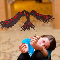 Lots of shadow puppet workshop photos from NAEA14.